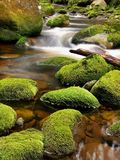 Broken trunk on blocked at stream bank above bright blurred waves. Big mossy boulders in clear water of mountain river. Royalty Free Stock Images