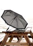 Broken umbrella Stock Images
