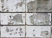 broken vägg Royaltyfria Bilder