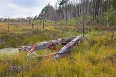 Broken wagon in bog landscape Stock Photography