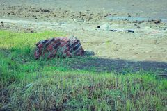 Broken wall stone. In the field grass stock photography