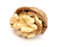 Broken walnut Royalty Free Stock Photography