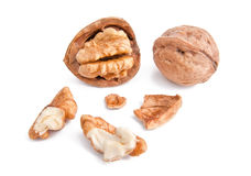 Broken walnuts. Two broken walnuts with the kernel Royalty Free Stock Photography