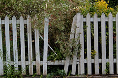 Broken white fencing Royalty Free Stock Photo