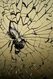 Broken window Royalty Free Stock Photo