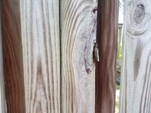Broken wood board on fence Stock Photography