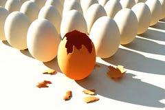 brokenned ägg Arkivbild