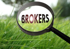 Brokers. Magnifying glass with the word brokers on grass background. Selective focus Royalty Free Stock Photos