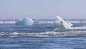 Brokken die van ijs uit aan de Atlantische Oceaan afdrijven stock video