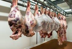Brokken van vlees het hangen in koeler royalty-vrije stock afbeelding