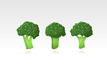 Brokkoli stock abbildung