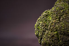 Brokkoli auf einem schwarzen Hintergrund Stockfotografie
