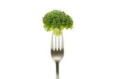 Brokkoli auf einer Gabel Lizenzfreies Stockfoto