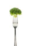 Brokkoli auf Gabel Stockfoto