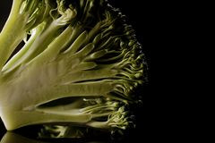 Brokkoli Florets Lizenzfreie Stockfotografie