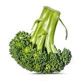 Brokkoli getrennt auf Weiß Stockfoto