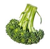 Brokkoli getrennt auf Weiß Lizenzfreie Stockfotografie