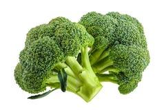 Brokkoli lokalisiert auf Weiß ohne Schatten stockbild