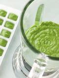 Brokkoli- und Spinatsäuglingsnahrung in der Mischvorrichtung Stockbilder