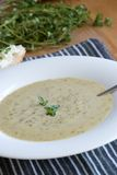 Brokkoli und stilton Suppe Stockfotografie