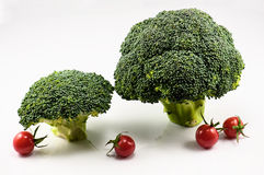 Brokkoli und Tomaten Lizenzfreie Stockbilder