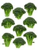 BrokkoliFlorets Lizenzfreie Stockfotografie