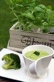 Brokkolisuppe Stockfoto