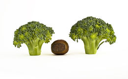 brokułów kapusty dokrętka obrazy royalty free