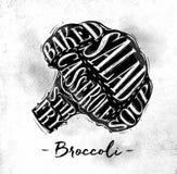 Brokuły ciie plan ilustracja wektor