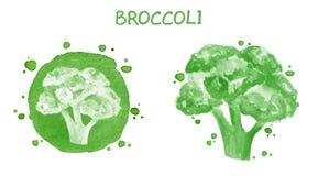 brokuły stary ilustracyjna oryginału akwarela księżyca Obrazy Stock