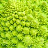 Brokuły zamykają w górę tekstury fractal tła Fotografia Stock