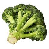 brokuły odizolowane white Zdjęcia Stock
