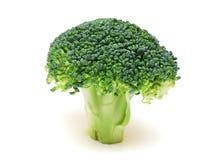 brokuły odizolowywali biel Obraz Stock