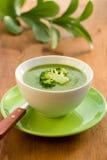 brokuły zupni Fotografia Stock