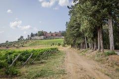 Brolio城堡和附近的葡萄园 免版税库存图片