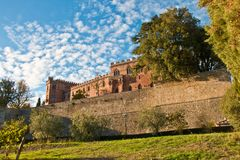 Brolio城堡chianti 库存图片