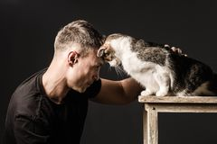Bromance, de vriendschap, de mens en de kat, raakten hun voorhoofden royalty-vrije stock afbeelding