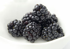 brombeeren Stockfotos