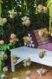 Bromelia Royalty-vrije Stock Afbeeldingen