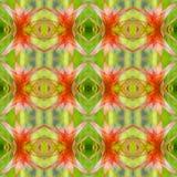 Bromeliad guzmania background Stock Image