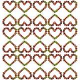 Bromeliad heart background Stock Image