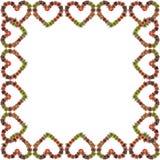 Bromeliad heart frame Royalty Free Stock Photos