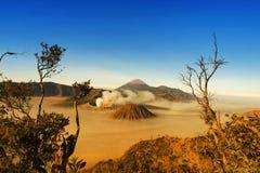 Bromo腾格尔塞梅鲁火山国家公园 免版税图库摄影