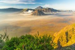 Bromo, Batok, and Semeru landscape Stock Images