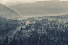 Bromo caldera in i dimman royaltyfri foto