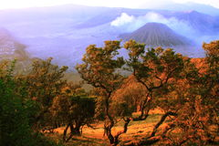 Bromo Mountain Surabaya Royalty Free Stock Photography