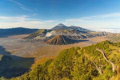 Bromo mountain view from the top Royalty Free Stock Photography