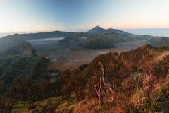Bromo. Panoramic view of Bromo volcano Royalty Free Stock Photo