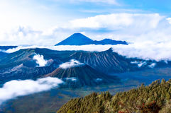 Bromo and semeru mountain. Over the cloud Stock Photography
