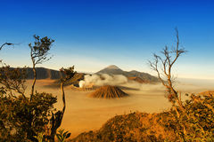 Bromo Tengger Semeru National Park Royalty Free Stock Photography